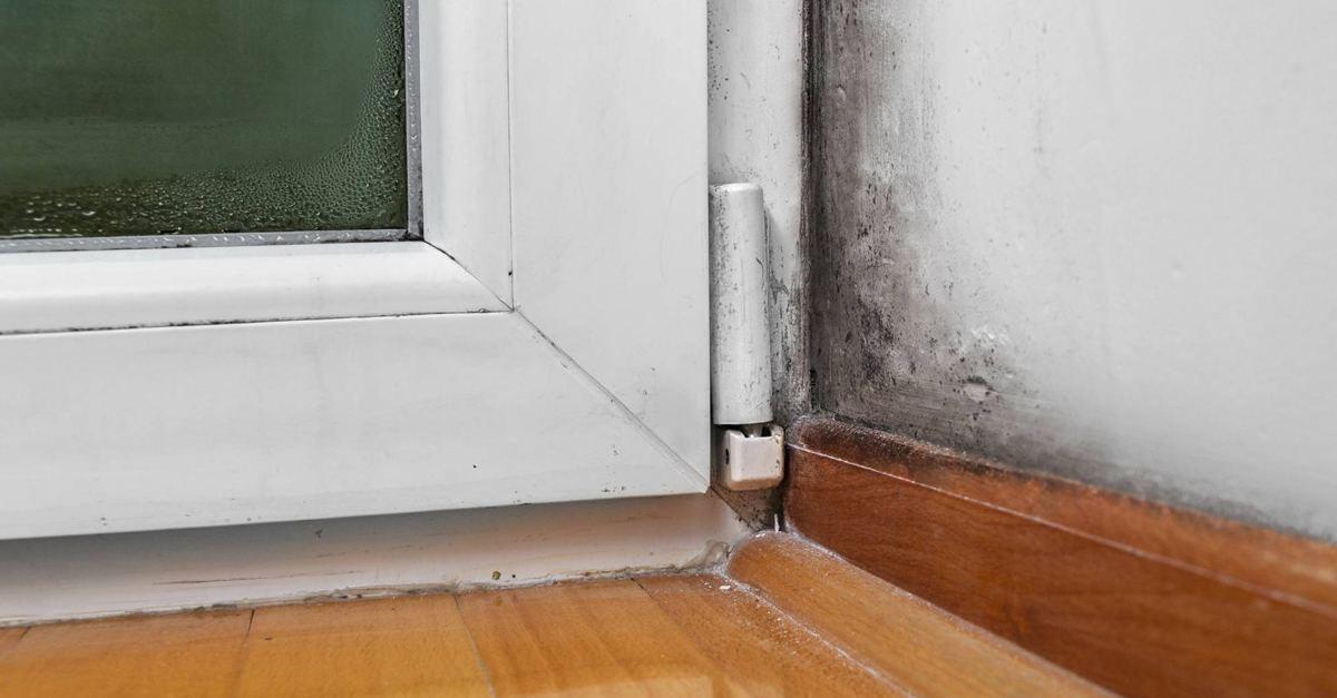 Indemnizaciones por humedades en los bajos